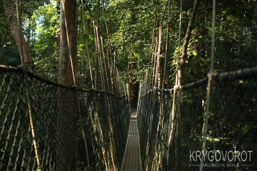 Подвесной мост в Таман Негара