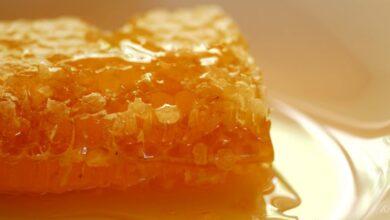 Photo of Почему Крымский мёд такой дорогой и что же в нём особенного.